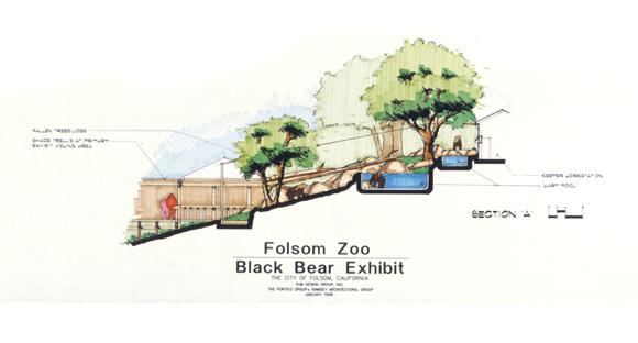 Rjmdesigngroup 187 Folsom City Zoo Sanctuary Black Bear Exhibit