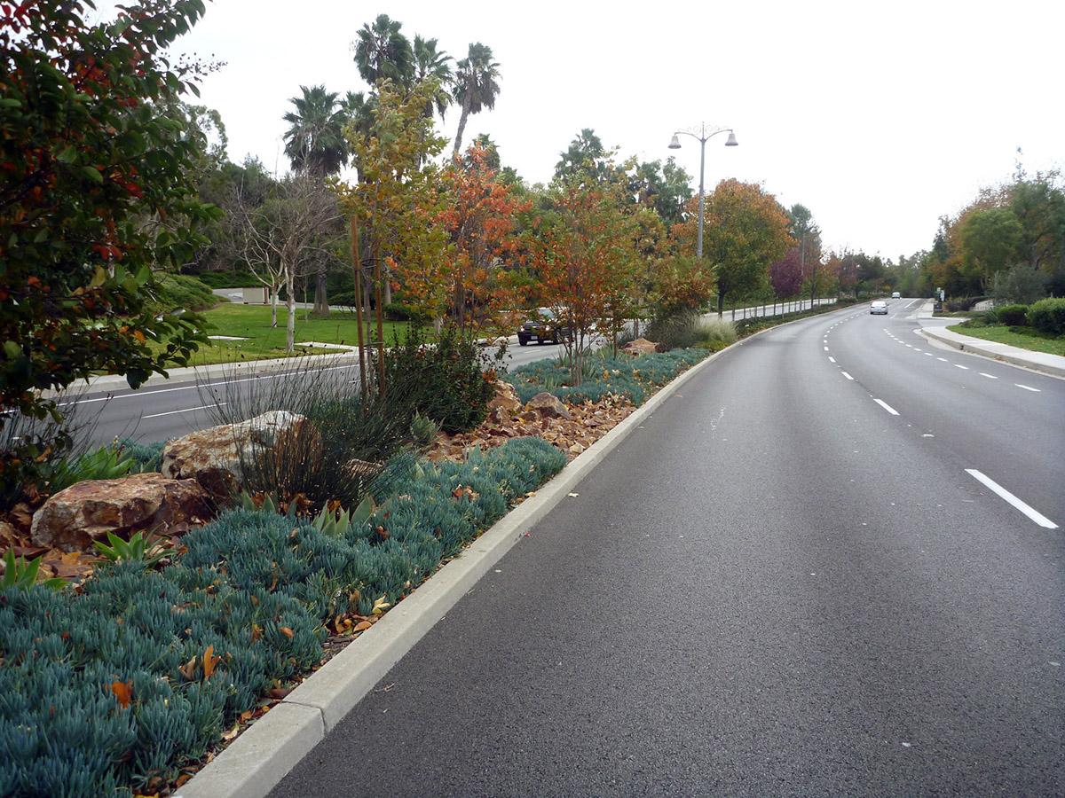 Rjmdesigngroup 187 Marguerite Parkway Median