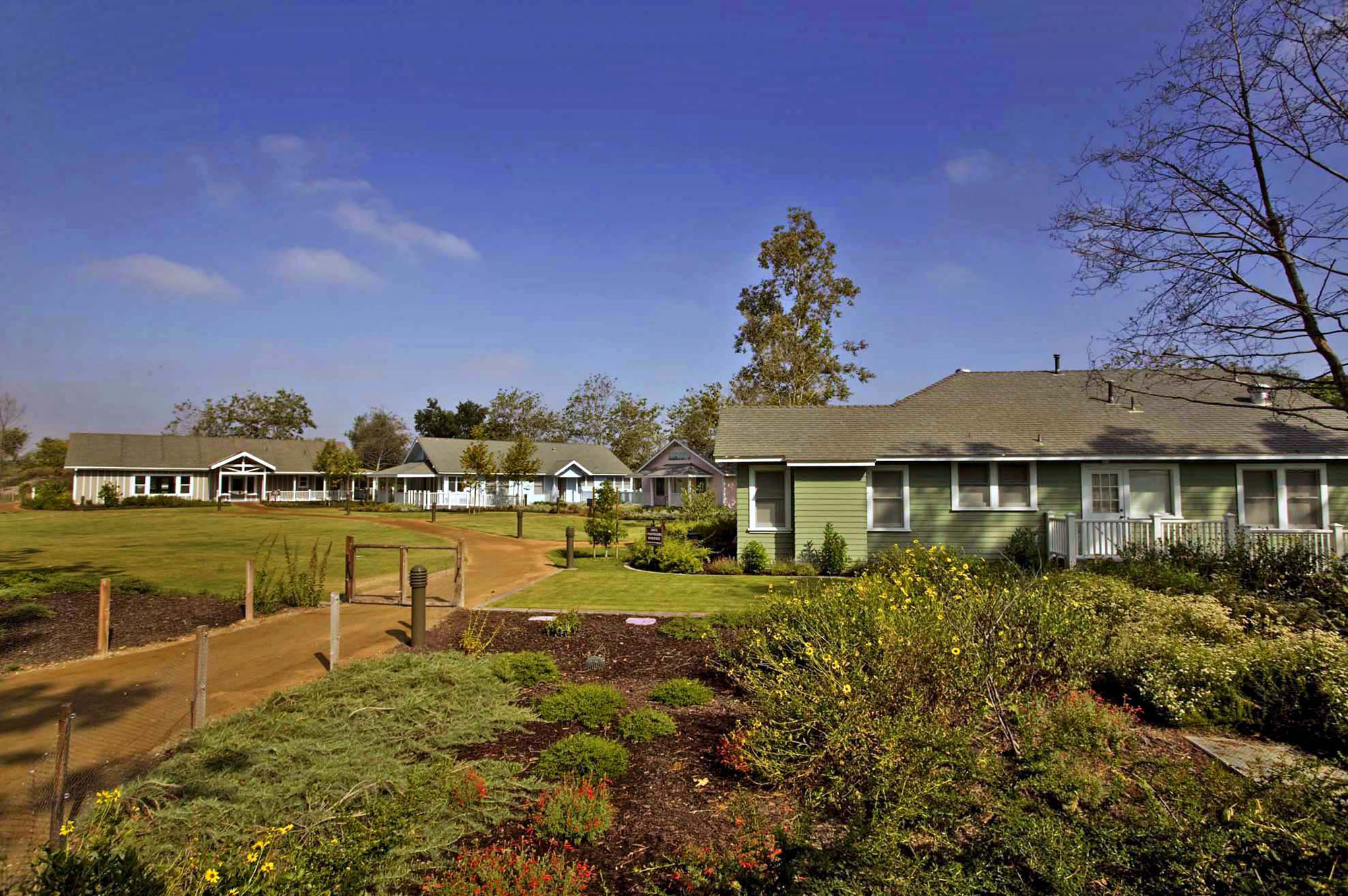 "Featured image for ""San Joaquin Marsh and Wildlife Sanctuary Campus"""