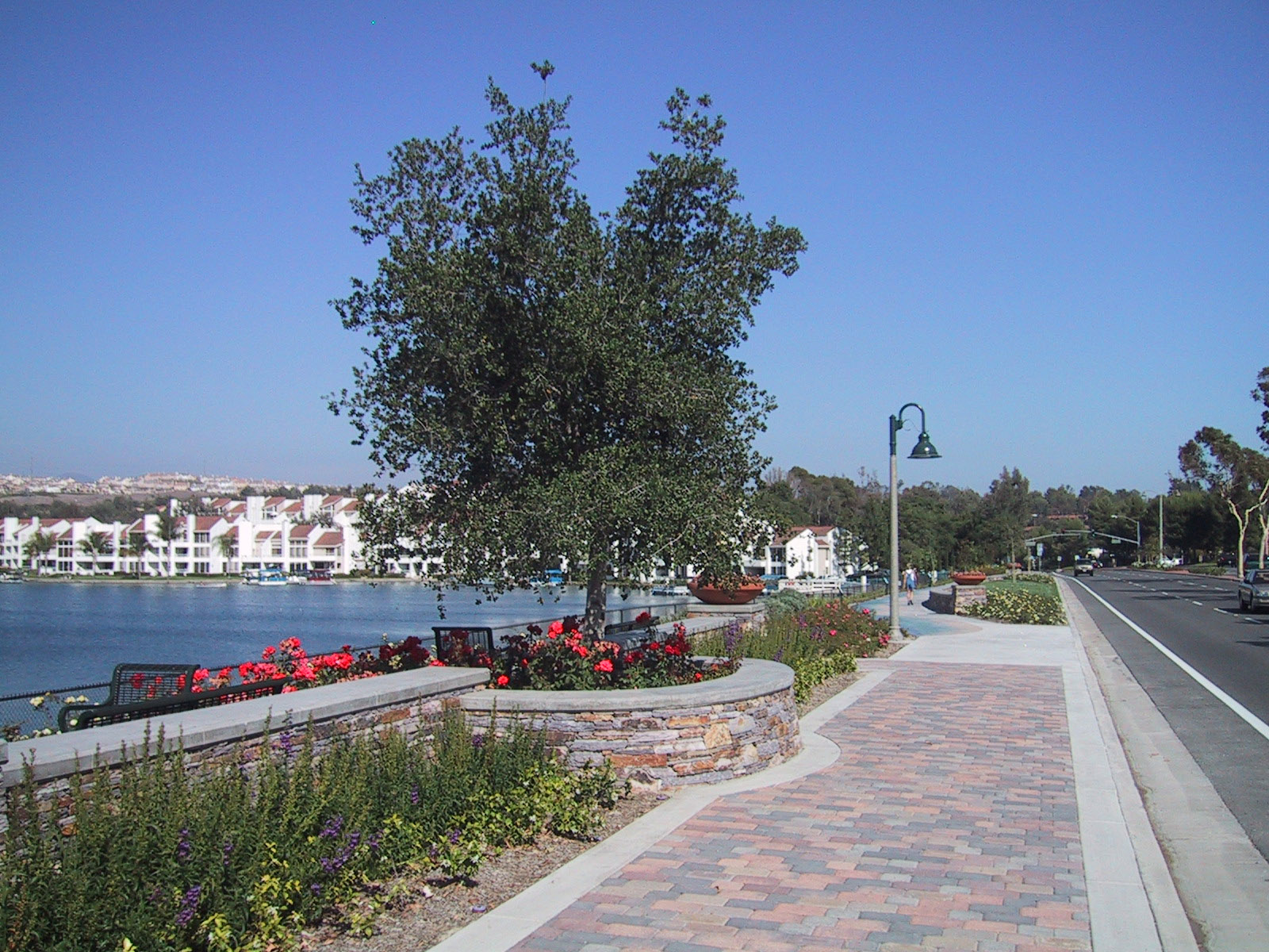 "Featured image for ""Lakeside Promenade"""